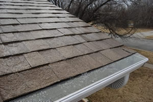 Wet E-Z Drop In gutter screens work well for light debris